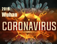 Update on the Coronavirus